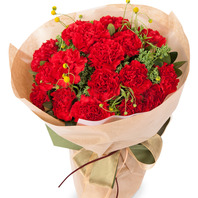카네이션 꽃다발