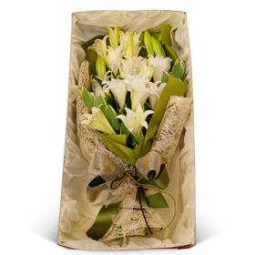 백합꽃박스