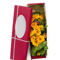 해바라기꽃상자